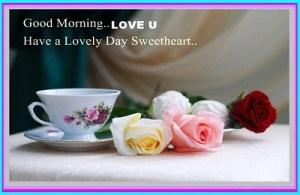 good morning tea rose
