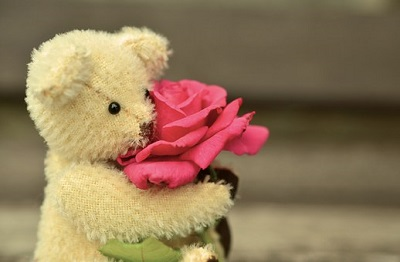 download for facebook of teddy bear images