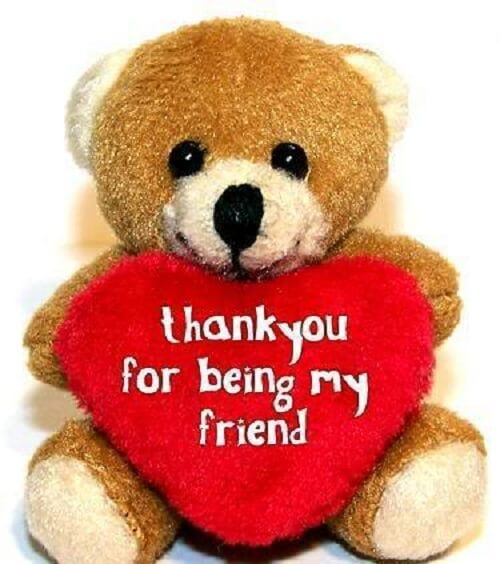 teddy bear for friend
