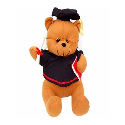 teddy bear photos download