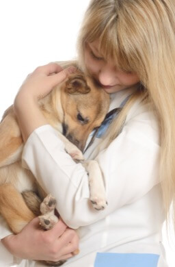 veterinary professional comforting puppy