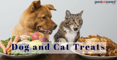Dog And Cat Treats: Finding The Best Ones For Your Pets