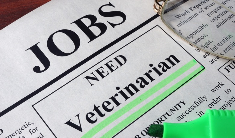 Newspaper want ad for Veterinarian