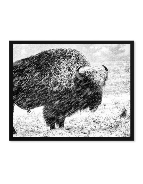 Professional Framed Photography Prints