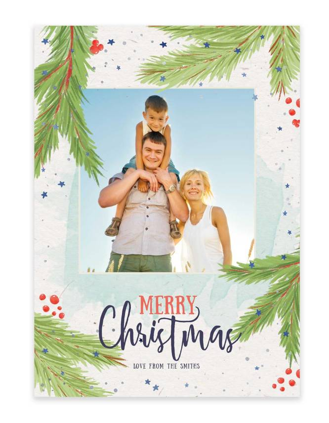have a merry tropical christmas photo card