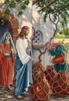 Pernikahan Di Kana - Perkawinan Kana, Gereja Kana Ziarah Tempat Mukjizat Pertama Kali Yesus Di Israel