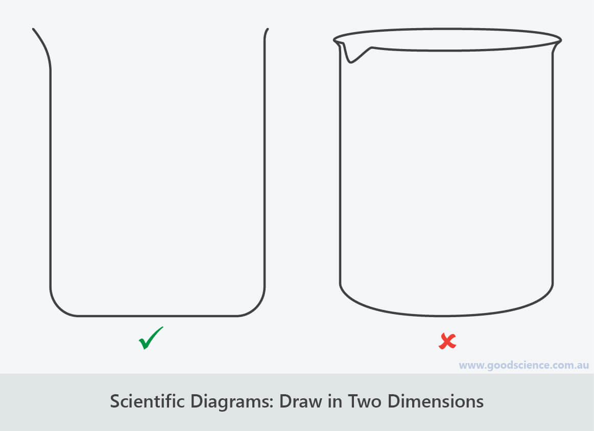 Scientific Diagrams