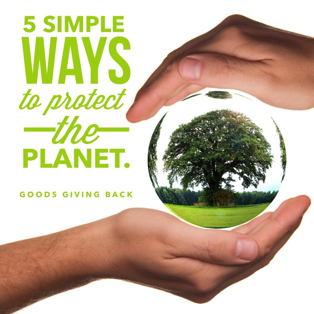 5 Ways To Protect Planet