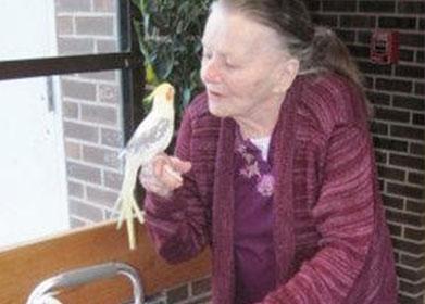 nursing home binghamton ny new berlin good shepherd communities assisted living - Chase Memorial Nursing Home & Rehab