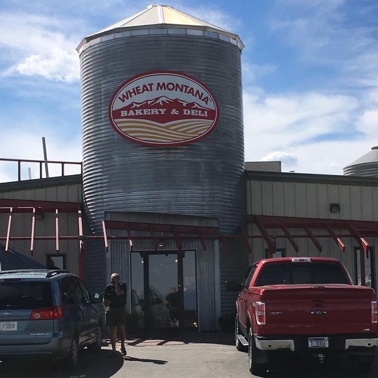 Montana Wheat