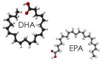 EPA DHA feature photo