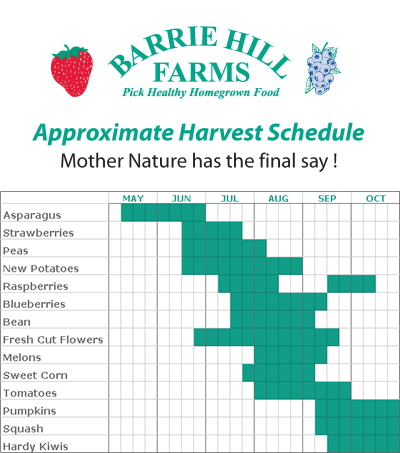 Barrie Hill Farms