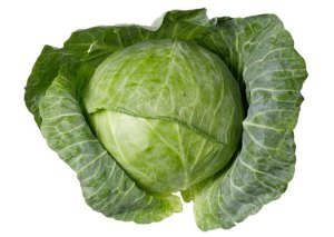 Green Cabbage Nutrition of Cabbage