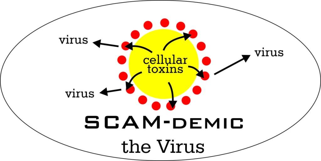 SCAMdemic – the Virus
