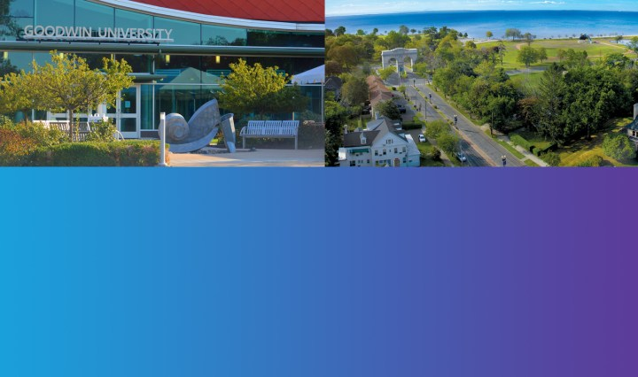 university of bridgeport acquisition