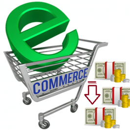Looking to Bring Down E-commerce Development Costs? Here's How You Can Do It.