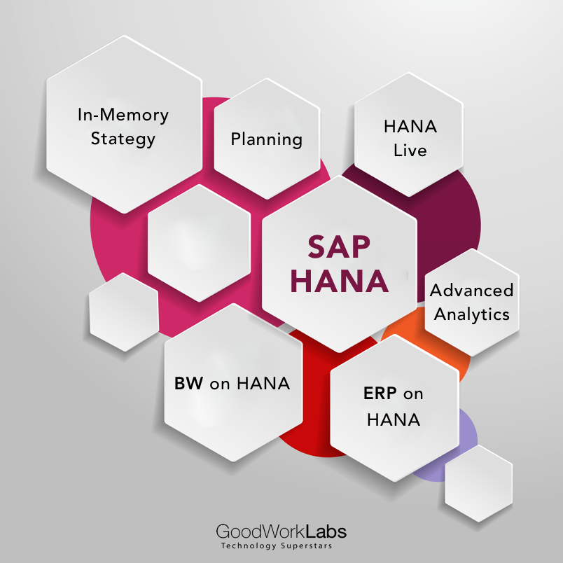 SAP HANA software developers