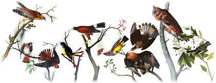 226 de ani de la naşterea lui John James Audubon