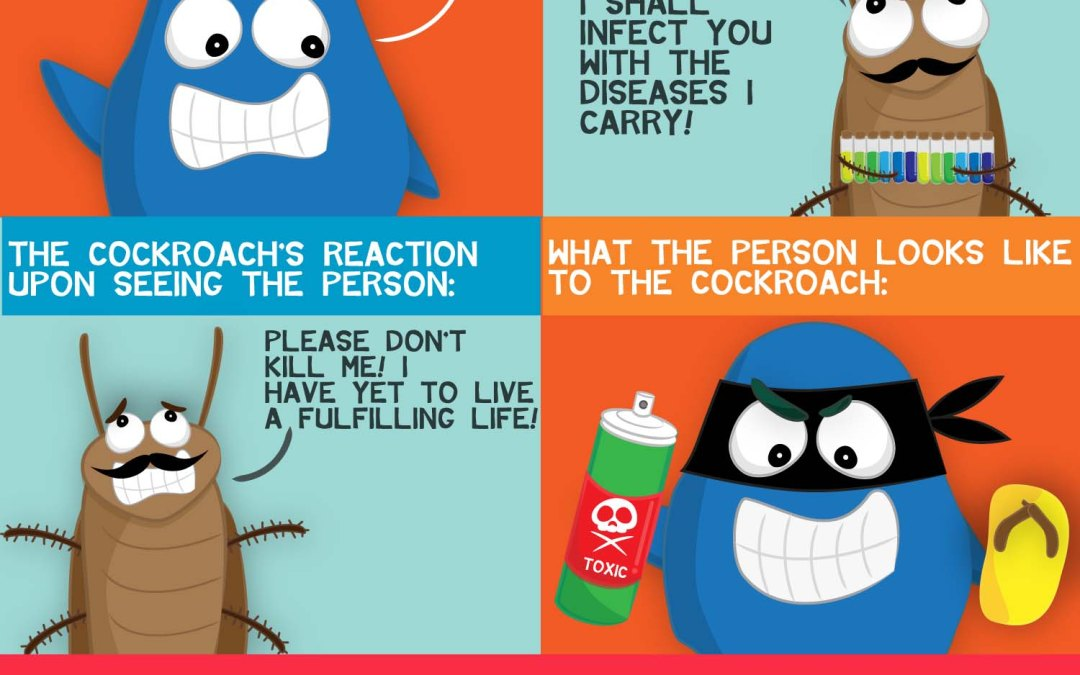 Cockroaches: Expectations vs. Reality Click here for more expectations vs. reality :)