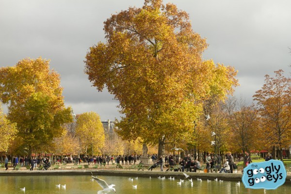 Paris in the Middle of Fall