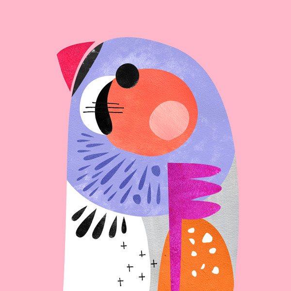 Pete Cromer Parrot