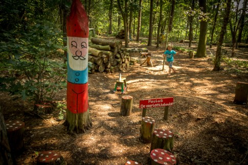 Kabouter bos