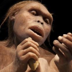 進化論は科学なのか?