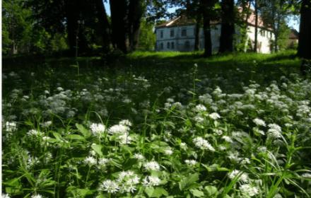 Польша туристическая. Где пожить туристу