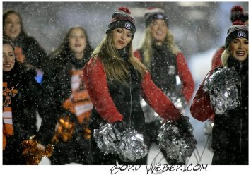 greycup1050335