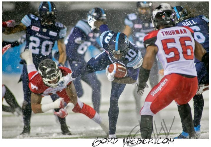 greycup1050667