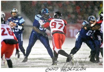 greycup1050678