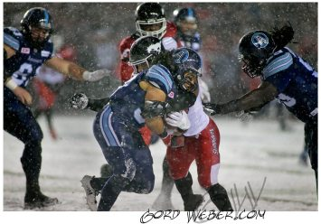 greycup1050906