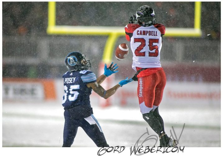 greycup1050989