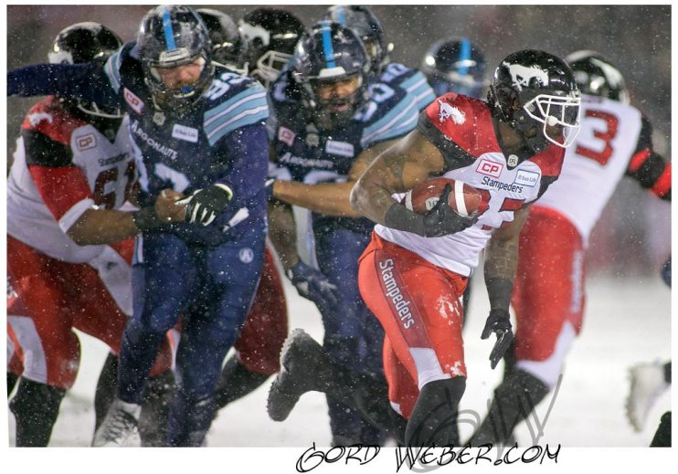 greycup1051076