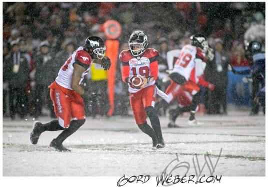 greycup1051101
