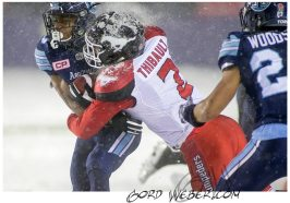 greycup1051297