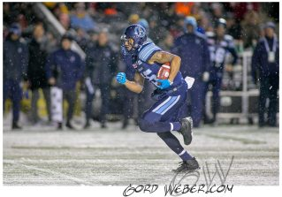 greycup1051898
