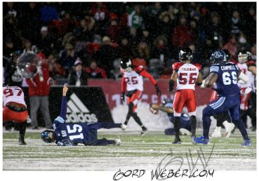 greycup1052577