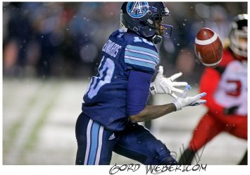greycup1052622