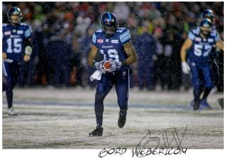 greycup1052677