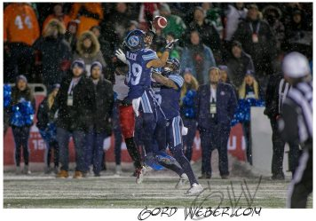greycup1052878