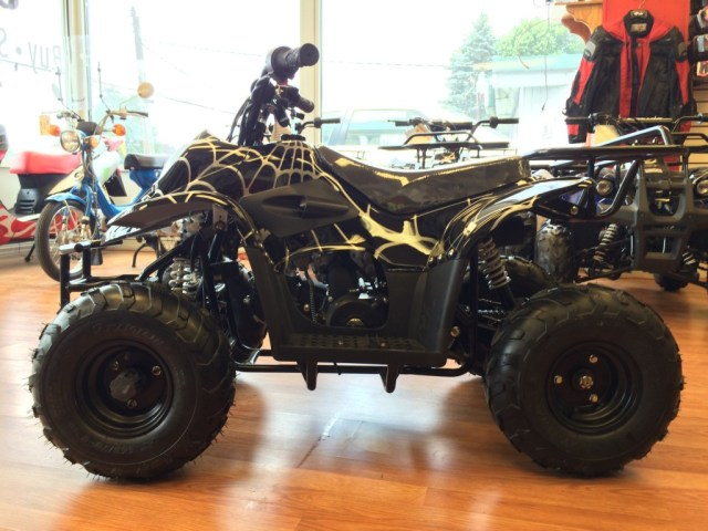 110cc Coolster 3050c Black ATV (Side View)