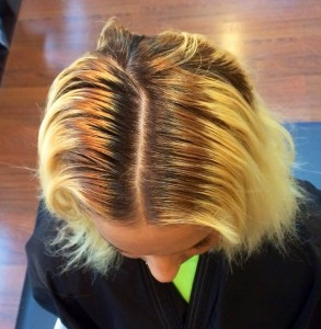 Hair Color Salon Irmo Columbia SC Highlights Amp Lowlights