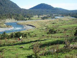 West Coast Wilderness Trail switchbacks goRide