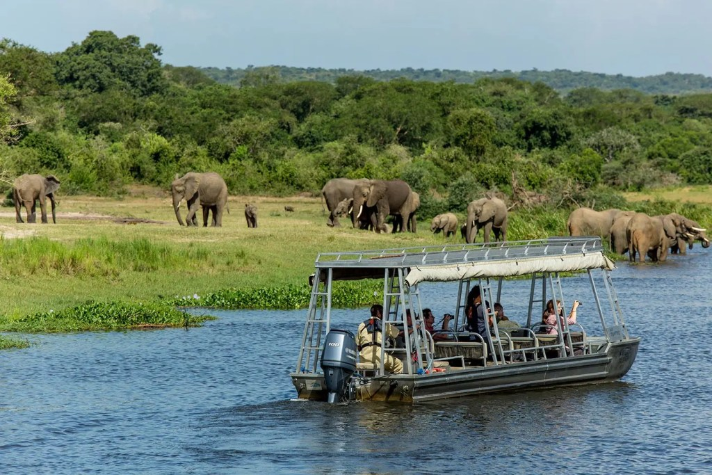 A boat launch trip on Paara stretch in Murchison