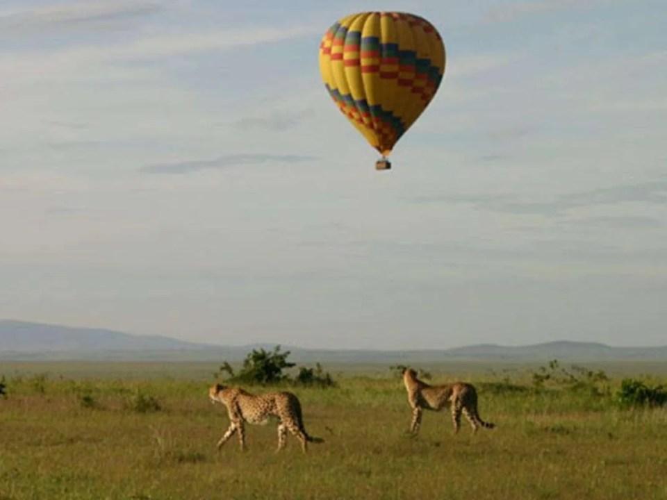 Hot Air Balloon Safari Over Murchison Falls N. Park