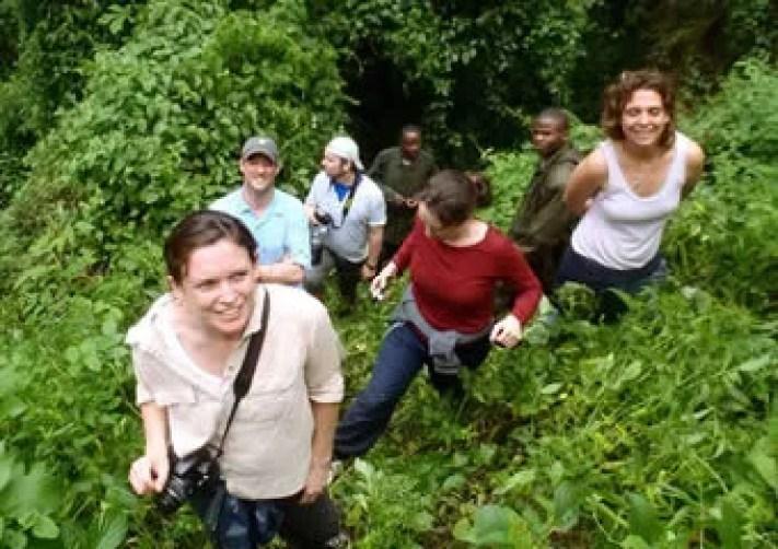 Gorilla trekking- 1 Day Gorilla trek Uganda