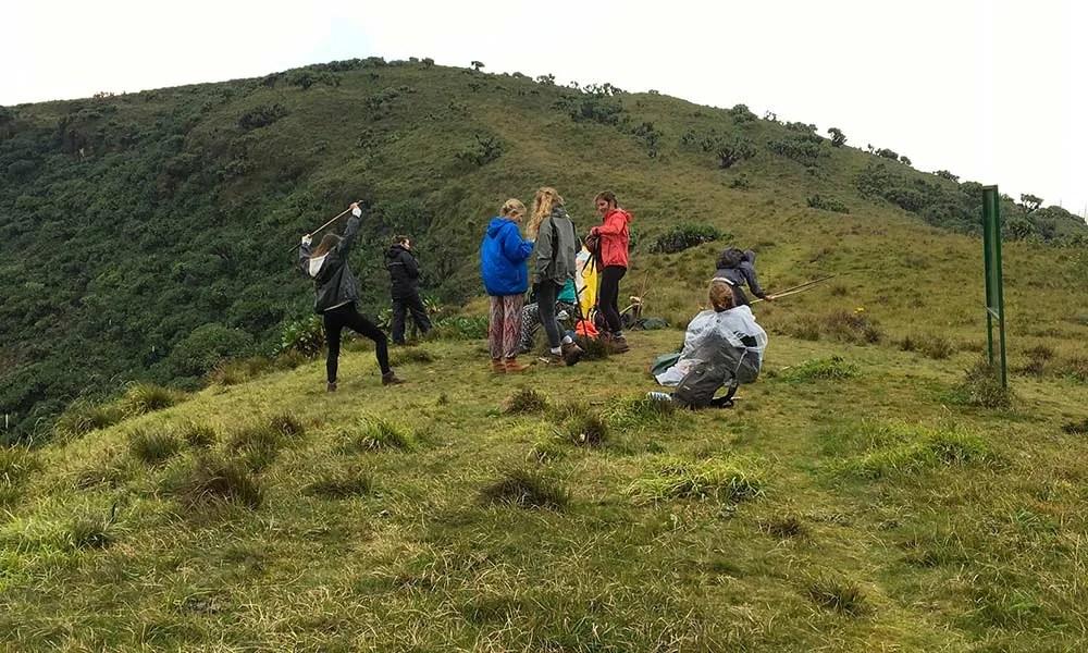 mount bisoke hike rwanda