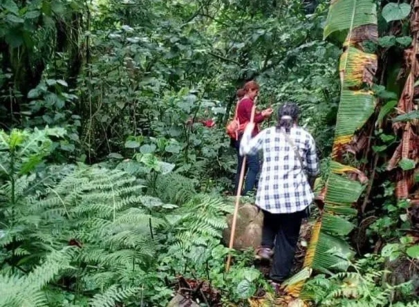 Mahoma Trail in Rwenzori