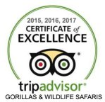 WhatsApp Gorillas and Wildlife Safaris